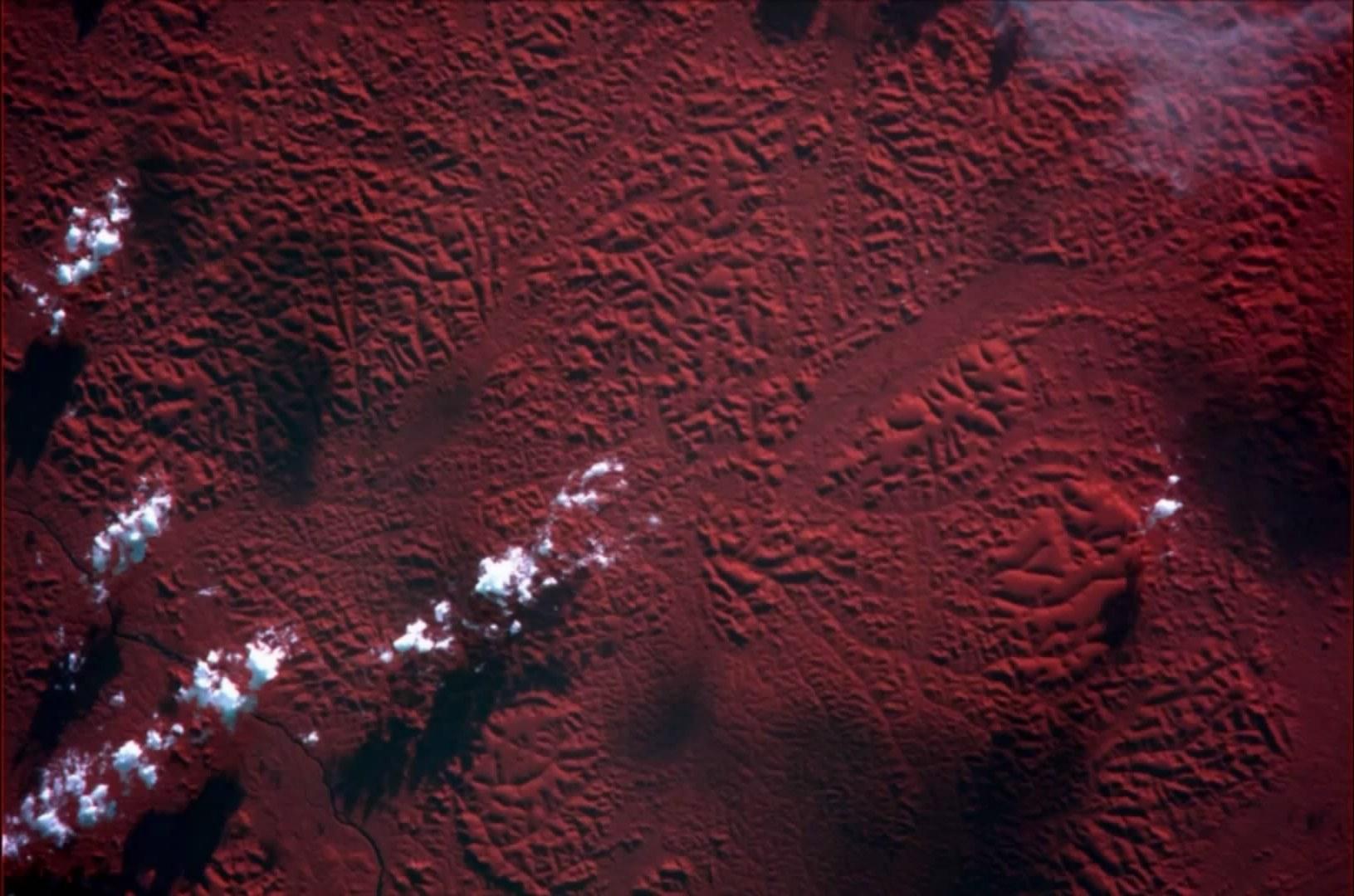 Джунгли, ИК-изображение