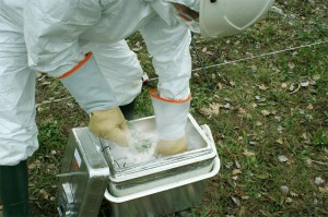 Процесс сбора проб растений после посадки предполагаемого НЛО