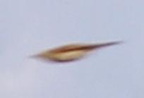 K_bird