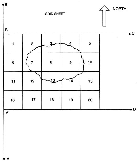 Разметка на квадраты